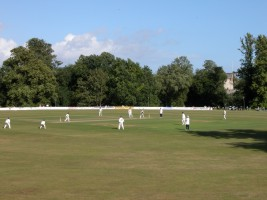 Cricket at Arundel