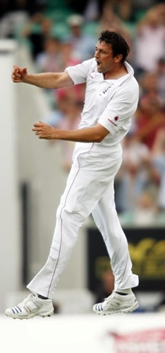 Steve Harmison celebrates the wicket of Hashim Amla