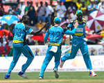 Zouks celebrate after getting a wicket