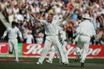 Simon Jones celebrates getting the wicket of Michael Clarke in Australia's 2nd innings at Old Trafford