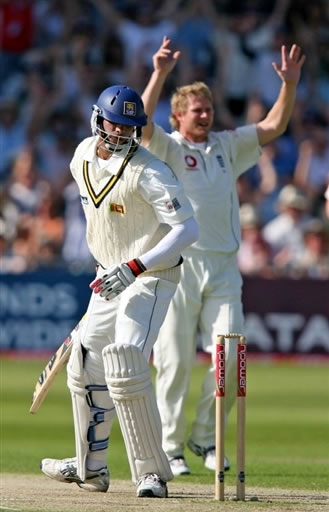Hoggard celebrates after taking the wicket of Vandort