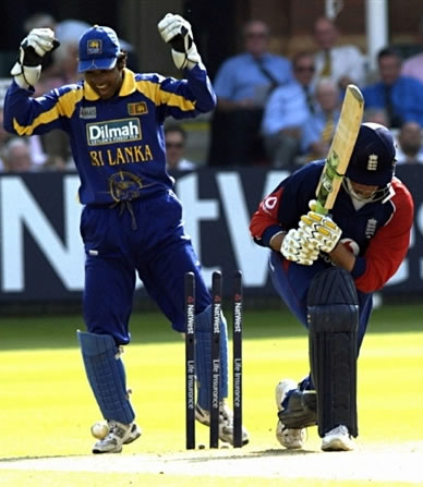 Sangakkara celebrates the dismissal of Trescothick